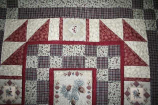 mom - johnathan a quilt 007