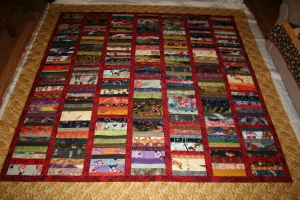 coin quilt - custom quilting